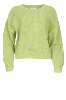 American Vintage | Cotton sweater with waffle fabric Bowilove | green